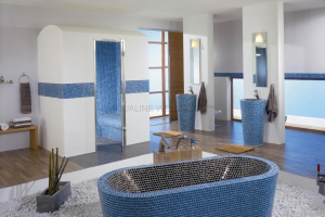 Feature bath room