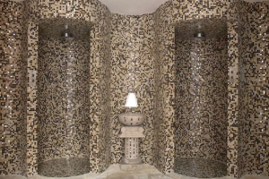 trend shower alcoves